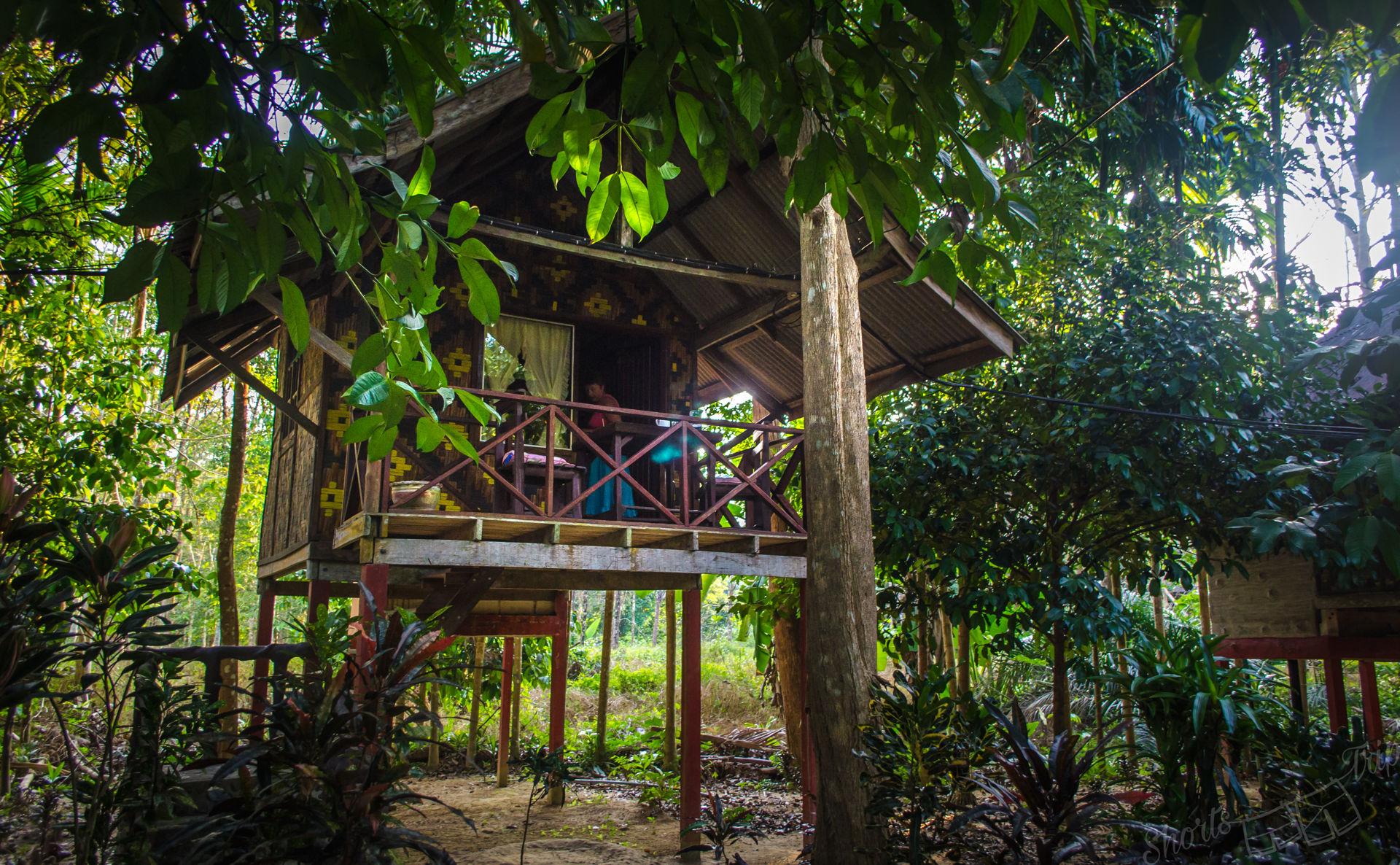 island resort khao sok