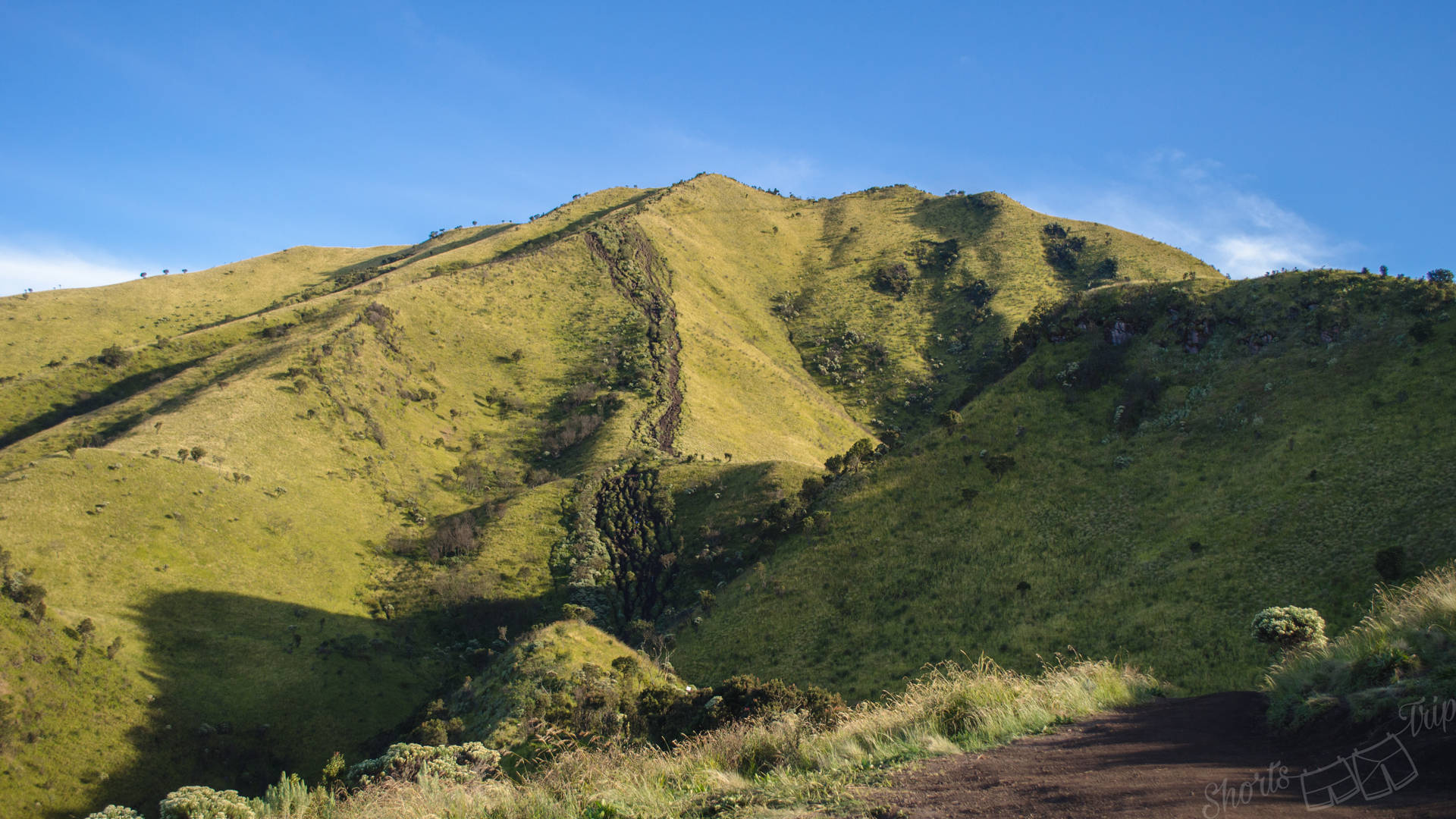 savanah merbabu, savana merbabu, merbabu climb, merbabu hike, merbabu hiking on your own, merbabu