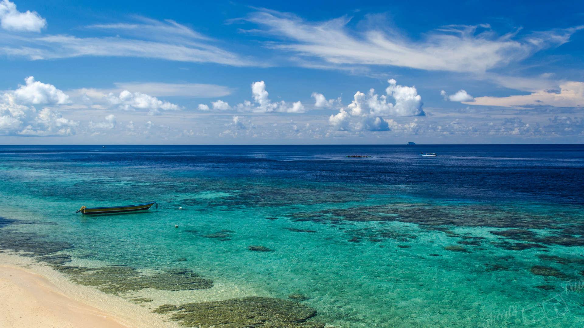 pulau ai, pulau ay, ai ay, ai island, ay island, banda islands, snorkel island ai, best snorkel indonesia, shark snorkel, shark diving