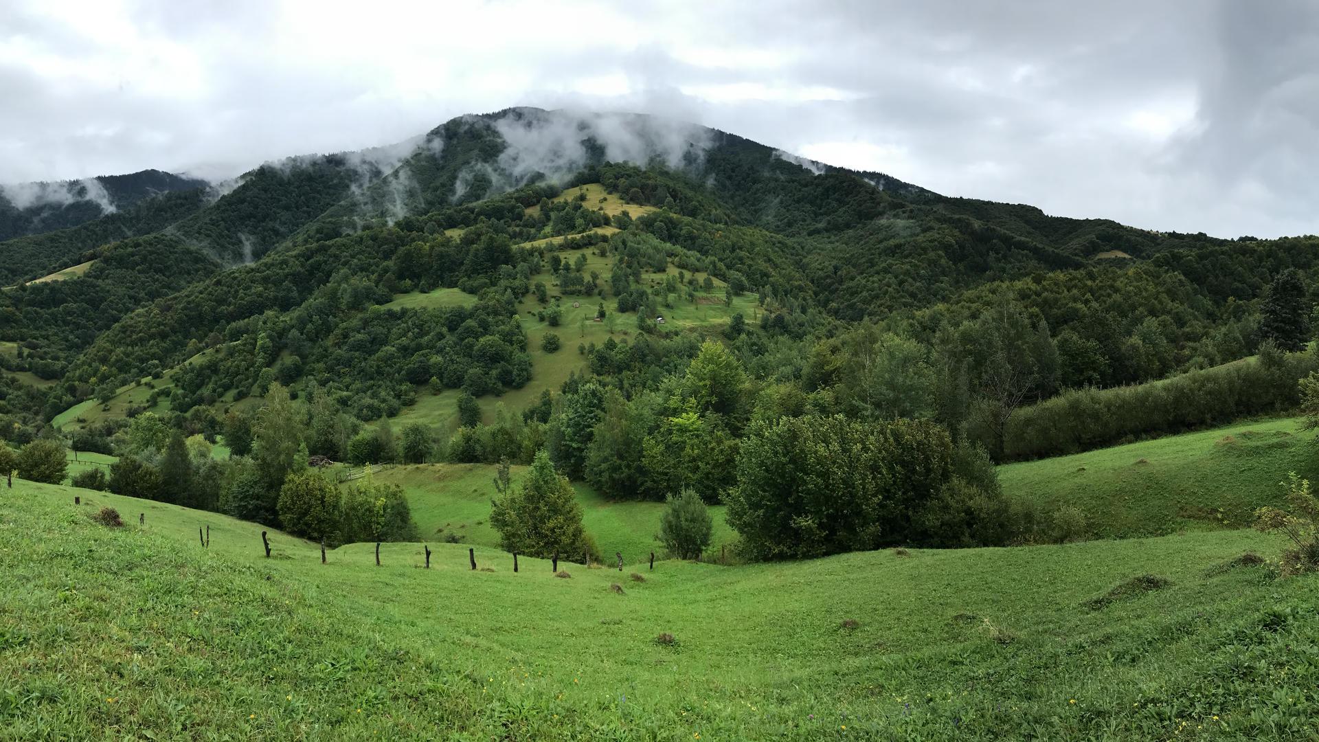 green lushes, clouds kolochava, clouds svidovec, carpathians clouds, after rain svidovec