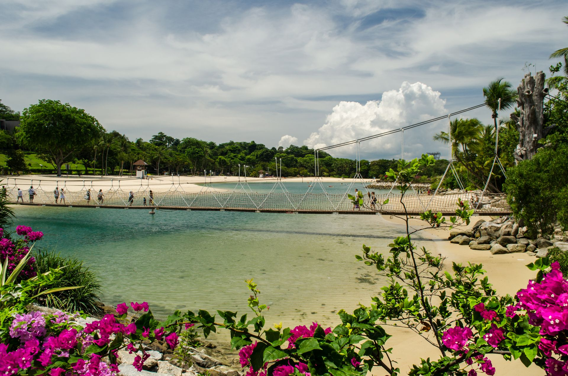 singapore sentosa, sentosa beach, sentosa flowers beach, best sentosa picture, sunny day at sentosa, sentosa island, where to fly drone at singapore, singapore drone guidelines, best drone places singapore, singapore laws, singapore regulations