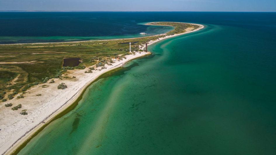 Остров Джарылгач - Украинские Мальдивы, джарылгач, украинские мальдивы, остров джарылгач, дикая природа джарылгача, дикий кабан на джарылгаче, джарылгачский национальный парк, пляжи джарылгача, черное море