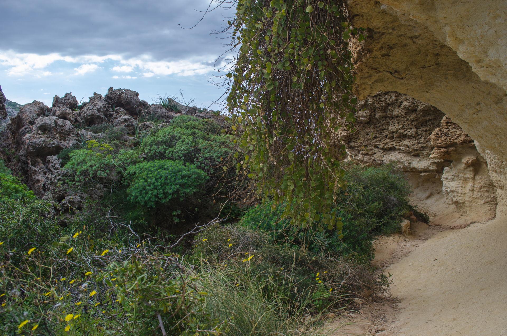 Għajn Tuffieħa, Għajn Tuffieħa golden bay, Għajn Tuffieħa malta, golden bay malta, malta hiking, Għajn Tuffieħa hike